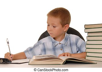 Little Einstein Six - Young boy studying