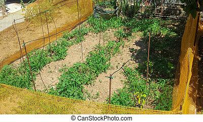 Little farm in the garden