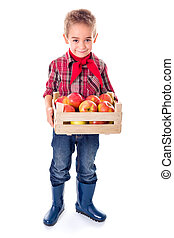 Little farmer boy holding apples