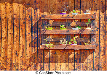 Little flower pots on wooden wall with copy space