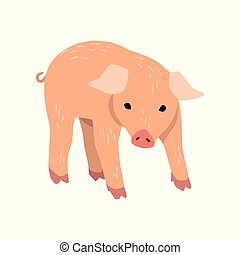 Little funny pig cartoon vector Illustration on a white background