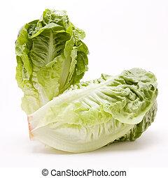 Little Gem lettuce isolated against white background.