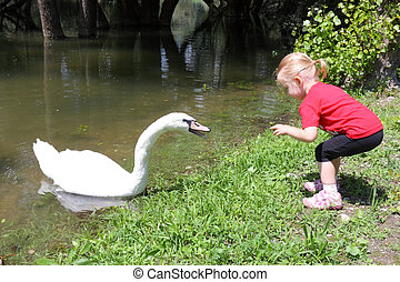 Little girl and a swan