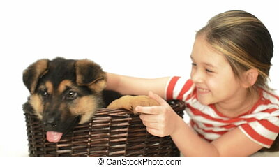 girl and puppy - little girl and puppy dog in wicker basket