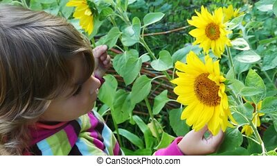 little girl blond smells yellow flowers and smile in summer
