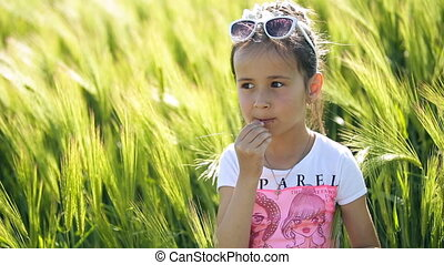 Little girl child brunette latin tastes green young grain from spikelet It is in the field of wheat