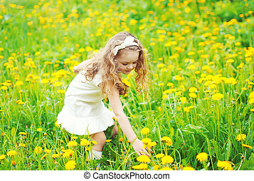 Little girl child in meadow picking yellow dandelion flowers in sunny summer day