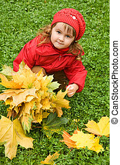 little girl collect maple leafs in the autumn in park