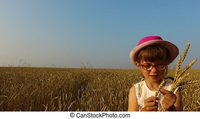 Little girl collects wheat spikelets. Wheat turned yellow. Soon it will begin harvesting