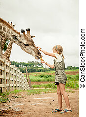Little girl feeding a giraffe at the zoo at the day time.