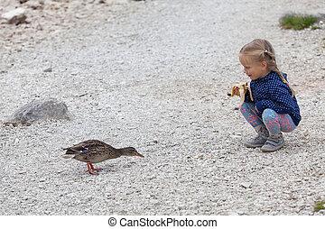 little girl feeding ducks at Black Lake in Durmitor National Park