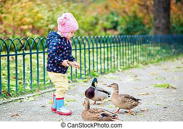 girl feeding ducks