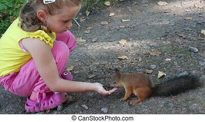 little girl feeding squirrel with nuts in park