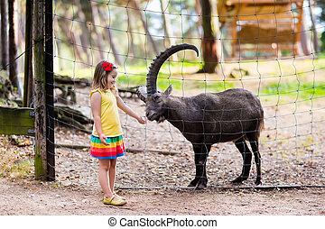 Little girl feeding wild goat at the zoo