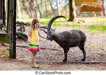 Little girl feeding wild goat at the zoo