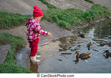 little girl feeds ducks by the water with a shallow depth of field