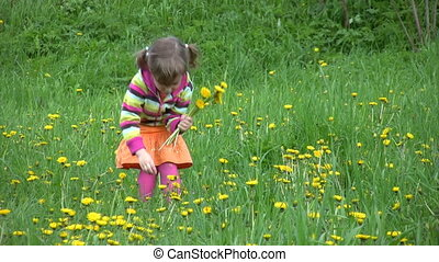 little girl gathering field flowers in forest, comes to...