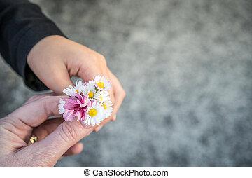 Little Girl Giving Mother Flowers