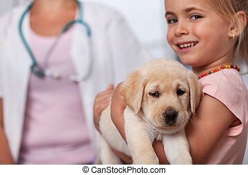 Little girl holding her puppy dog at the veterinary doctor office - closeup