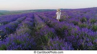Little girl in a straw hat walks the field of lavender in...