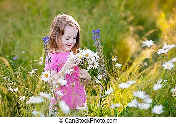 Little girl in daisy flower field - Child picking wild daisy...