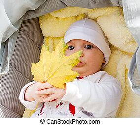 Little girl in pram holding autumn leaf