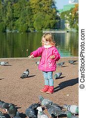 little girl is feeding pigeons