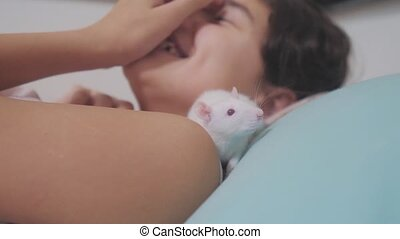 little girl is played on a bed with a white homemade handmade rat mouse. funny video rat crawling lifestyle over a little girl. girl and white mouse pet concept