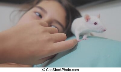 little girl is played on a bed with a white homemade handmade rat mouse. funny video rat crawling over a lifestyle little girl. girl and white mouse pet concept