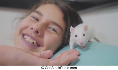 little girl is played on a bed with a white homemade handmade rat mouse. funny video rat crawling over lifestyle a little girl. girl and white mouse pet concept