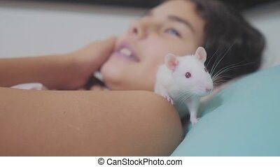 little girl is played on a bed with a white homemade handmade rat mouse. funny video rat lifestyle crawling over a little girl. girl and white mouse pet concept