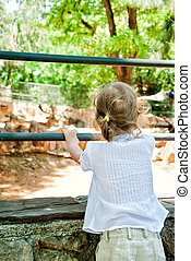 Little girl looking at animals in the zoo
