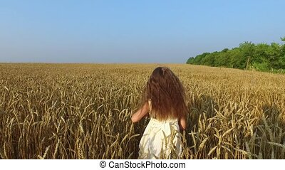Little girl moves in wheat field. Wheat turned yellow. Soon it will begin harvesting.