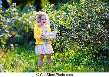 Little girl picking blueberry - Kids picking fresh berries...