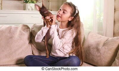 Little girl playing with Toy Terrier puppy