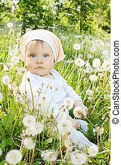 little girl sits in dandelions