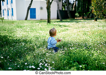 Little girl sits on green grass against the background of a building. Back view