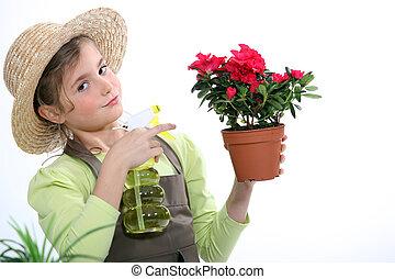 Little girl spraying a houseplant