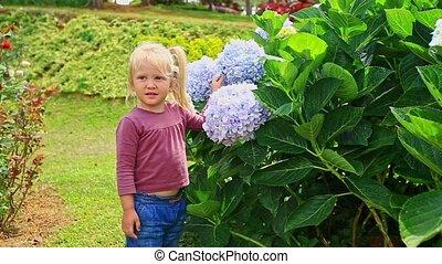 Little Girl Touches Hydrangea Flower Petals in Park