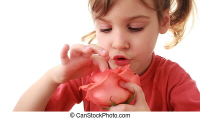 Little girl touches petals rose in hand and raises it up