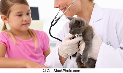 Little girl watching vet checking her kitten at the vets