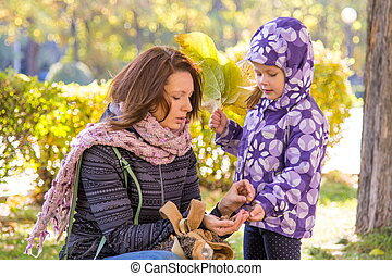 Little girl with autumn leaves with her mother believes gathered acorns in the park