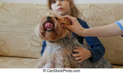 Little girl with dog watching TV on couch