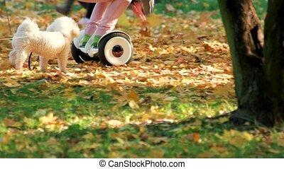 Little girl with gyroscooter and dog.