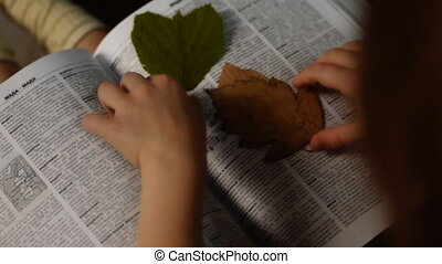 little girl with herbarium