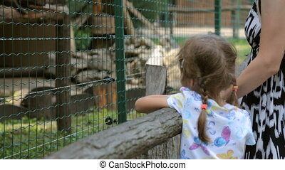 Little girl with mother in zoo