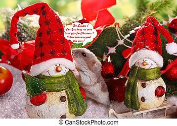 little hamster asking for christmas gift