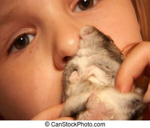 little hamster - close-up little girl holding small grey...
