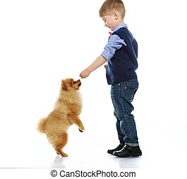 Little happy boy playing with spitz isolated on white background