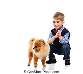 Little happy boy with spitz isolated on white background